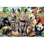 Puzzle 300 pièces - Photo de classe animaux