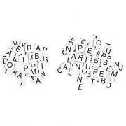 176 lettres magnétiques capitales