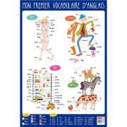 Poster pédagogique en PVC - 76x52  cm - Le vocabulaire Anglais