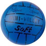 Balle peau éléphant volley 19 cm