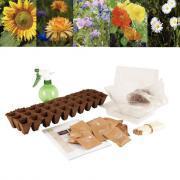 Assortiment de 30 sachets de graines de fleurs
