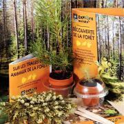 Coffret découverte de la forêt