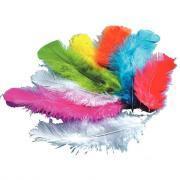 Plume dinde couleur assorti - Sachet de 250g