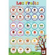 Poster pédagogique en PVC - 76x52 cm - Les fruits