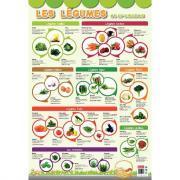 Poster pédagogique en PVC - 76x52 cm - Les légumes
