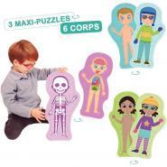 Lot de 3 puzzles corps humain 11 pièces