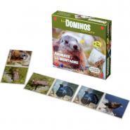 Domino les animaux de la montagne