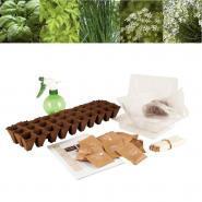 Assortiment de 30 sachets de graines aromates bio