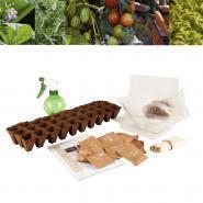 Sachet de graines de légumes Bio - Carton de 30