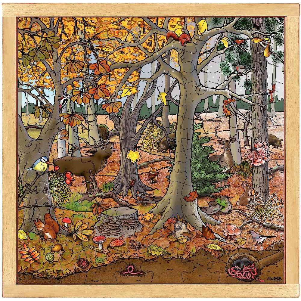 Puzzle d'observation de 64 pièces 'La forêt en automne / hiver'