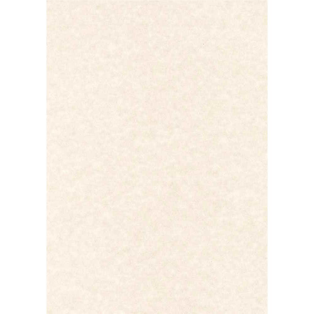 Papier parchemin gris - 95 grammes - format A4 - Pochette de 100