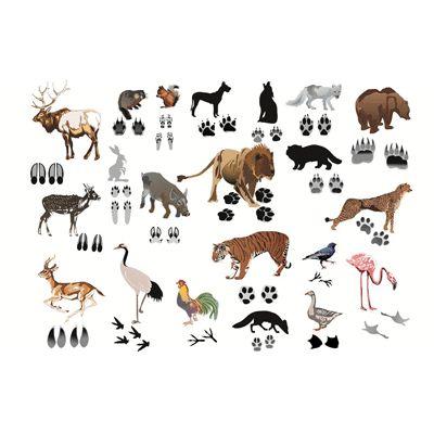 promotion Accessoires pour tapis mural: Les animaux et leurs empreintes
