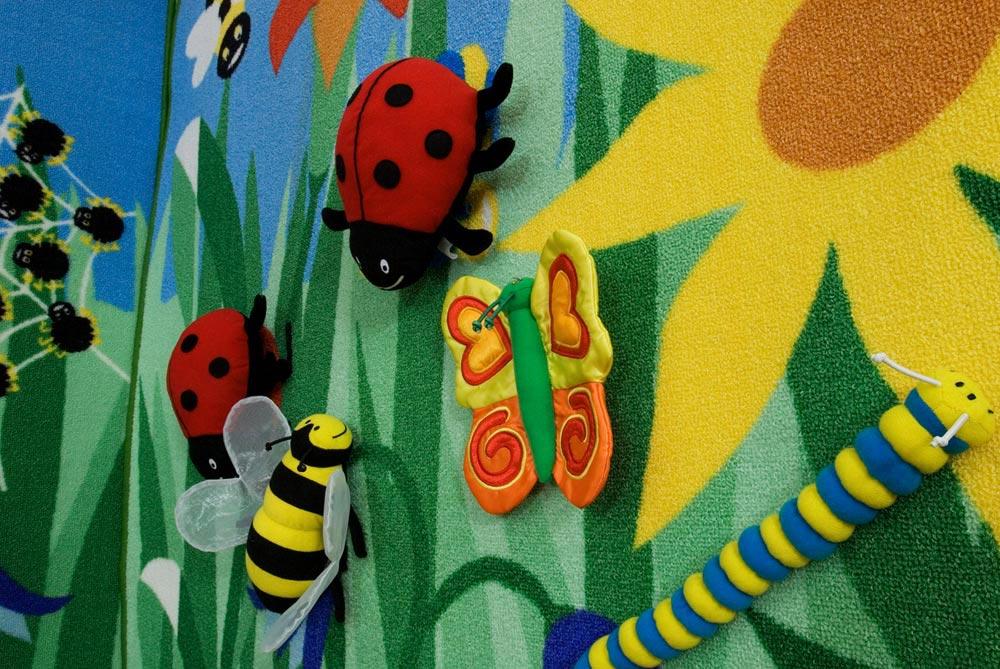 Insectes scratch géants pour tableaux muraux - Set de 5 - Kit for ...